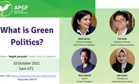 """""""What is Green Politics"""" panel discussion"""